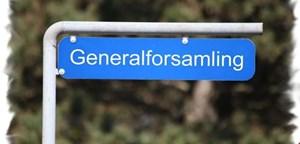 Alternativ form for generalforsamling – afgiv din stemme på hjemmesiden fra 1. juni