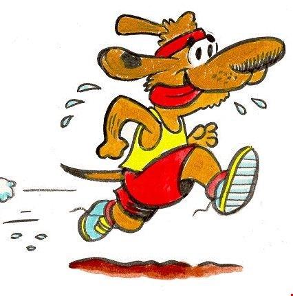 Løbe lørdagene forsætter i vinter halvåret!