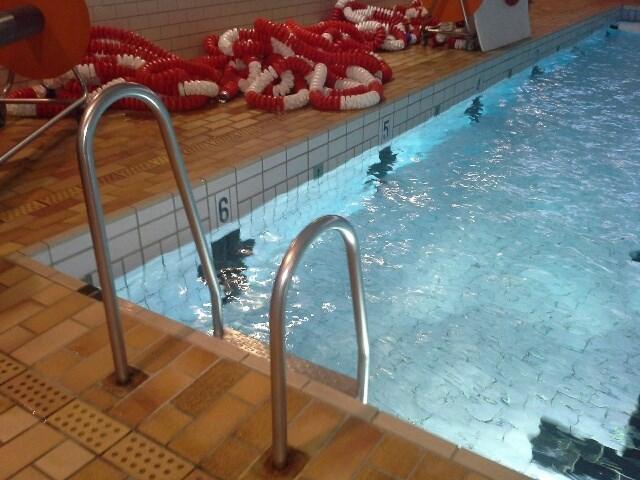 Svømmeprøver 2019